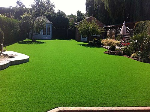 artificial grass reviews consumer reports