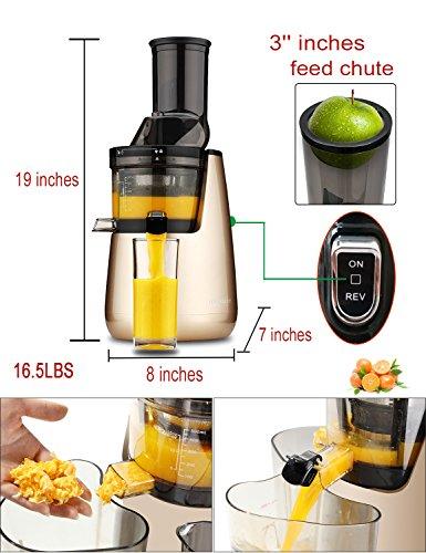 aquaport whole fruit cold press juicer review
